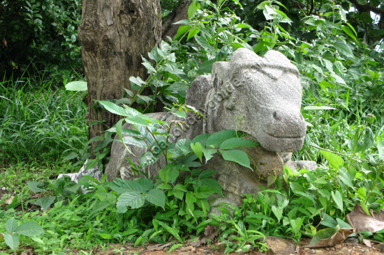 Nandi idol lying close to Chandreshwar Bhoothnath temple